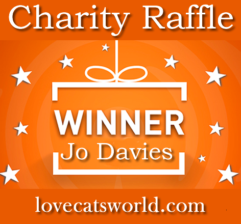 Gambling license for charity raffle
