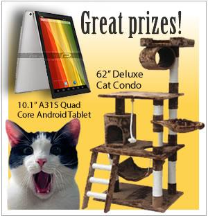 Charity Raffle - Win fab prizes!
