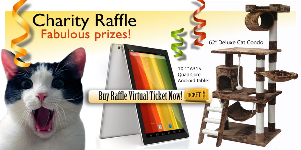 how to get charity raffle prizes