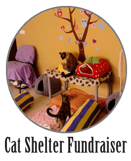 ways_to_donate_paw_fw