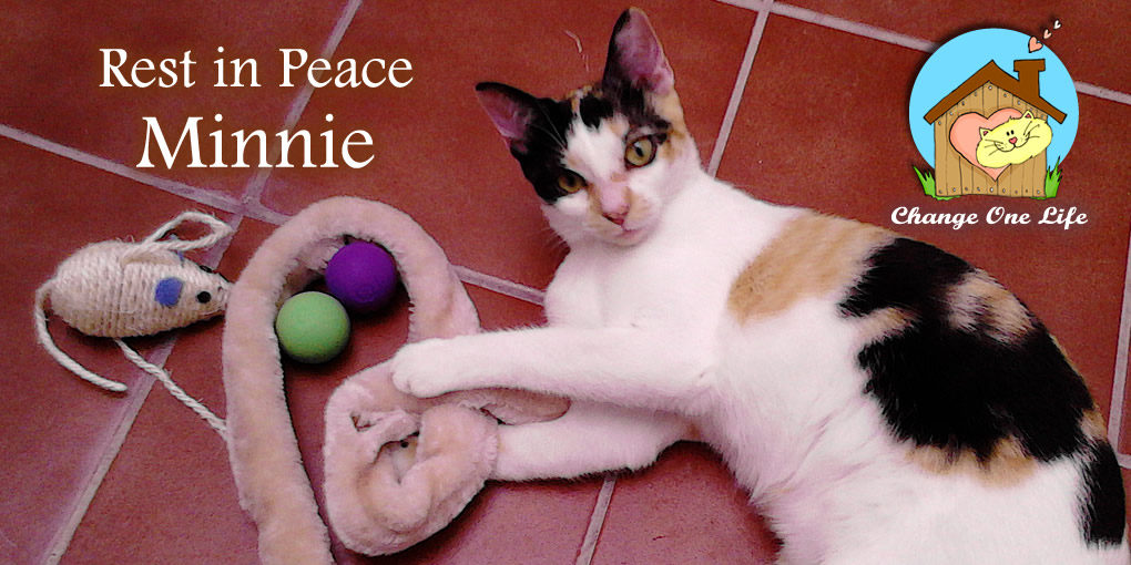 Rest in Peace Minnie