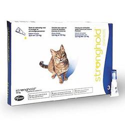 Cat Sanctuary Flea Treatment