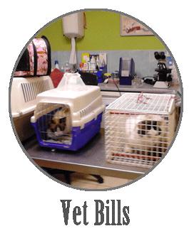 Pay Off vet bills