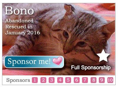 Sponsor Bono