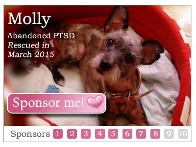 Sponsor Molly