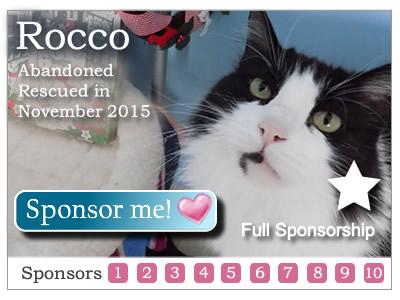 Sponsor Rocco