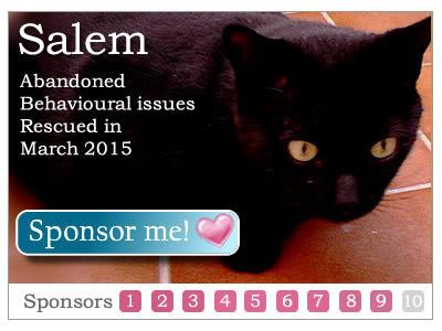 Sponsor Salem