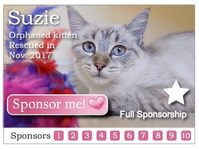 Sponsor Suzie