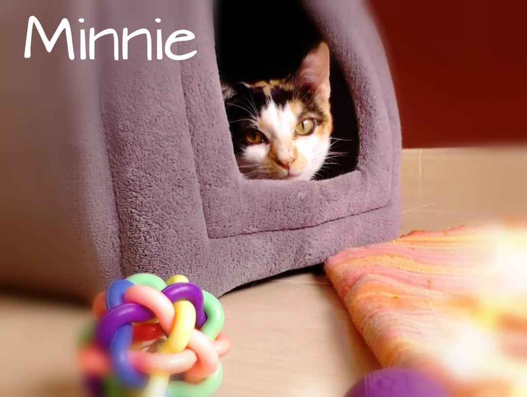 RIP Minnie