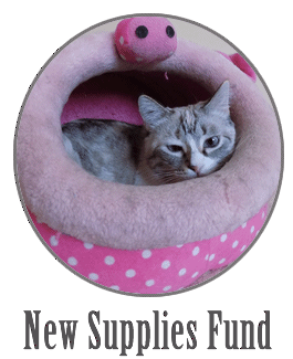 New Cat Shelter Supplies