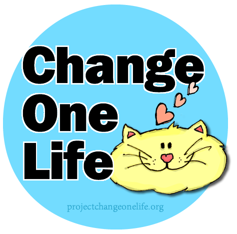 Change One Life Cat Sanctuary