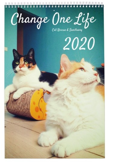 2020 Calendars – Charitable shopping!