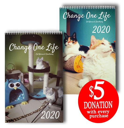 A $5 USD donation with every purchase!