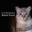 Cat Sanctuary COVID-19 Relief Fund